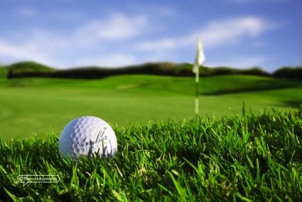golf клуб