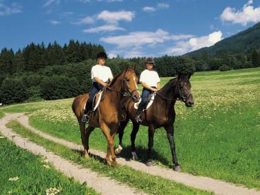 «Лечение лошадью»