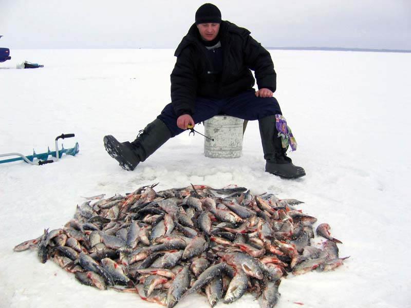 Зимняя рыбалка: спорт или увлечение